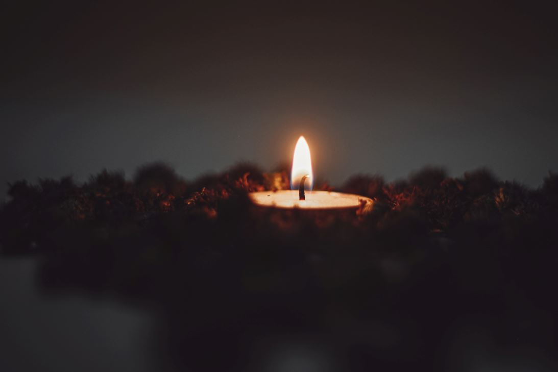 cremation services in Sarasota, FL